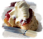 Fundraising Cream Tea Raised £450